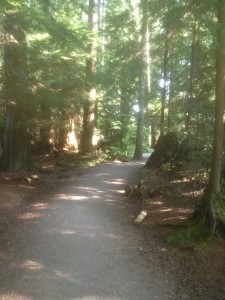 Entrance of Pacific Spirit Regional Park: Can hardly find other hikers